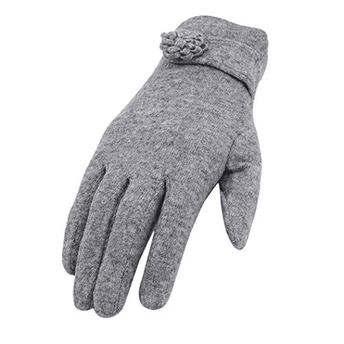 ZXDDD Ladies Gloves Super Soft Warm Thermal Thicken Windproof Anti Frostbite Elegant Full Finger Leather Bow Dotted Embroidery Gloves,Gray