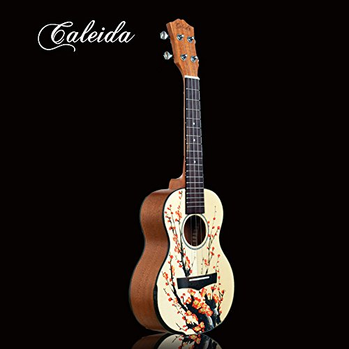 x-xin handbemalt Gemälde Beginner Guitar Gitarre besonders Kerry.