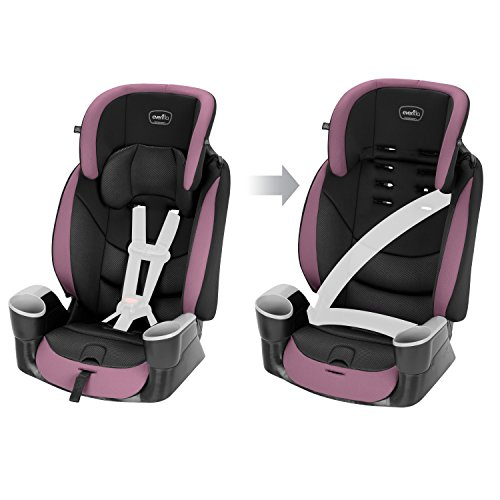 Maestro Sport Harness Highback Booster Car Seat, 22 to 110 lbs., Whitney Purple