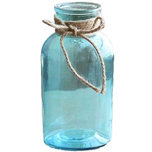 Da.Wa Vase en verre étui à fleurs bouche large créatif design coloful pour fleurs séchées ou hydroponique décoration de maison ou de bureau,Bleu
