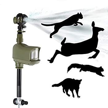 Havahart 5277 Motion-Activated Animal Repellent & Sprinkler 1 Pack Green