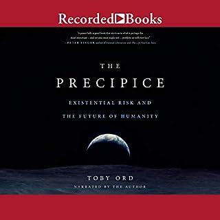 The Precipice cover art