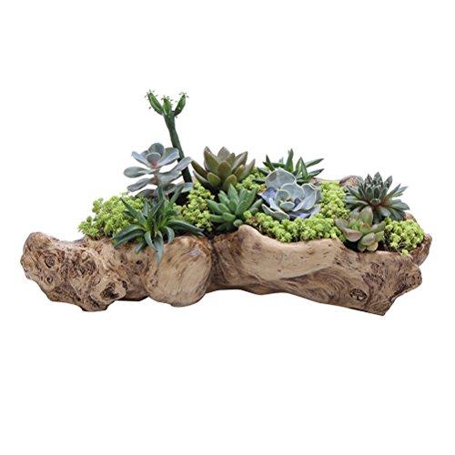 OUNONA - Macetero de jardín con diseño de árbol de simulación y raíz, ideal para exteriores