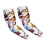 Fullmetal Alchemist Anime Arm Sleeves for Men & Women Moisture Wicking Uv Protection 2021 Newest Upgraded Cooling Basketball Baseball Football Cycling Sports Cooling Arm Guard £¨1 Pair£