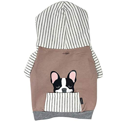 French Bulldog Hoodie in Gray | Frenchie Clothing | Black Pied Frenchie dog - XL