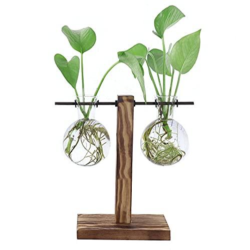 Ivolador Glass Planter Bulb Vase, Desktop Glass Libra Planter Bulb Vase Hanging with Retro Solid Wooden Stand for Hydroponics Plants Office Desk Wedding Decor (2 Bulb Vase)