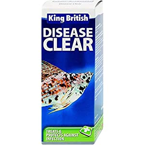 King British Disease Clear, 100 ml