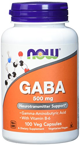 GABA 500mg + VITAMIN B-6 - 100 veg caps