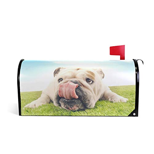 ZZKKO Leuke Bulldog Magnetische Mailbox Cover Wikkel Post Brievenbus Cover voor Buiten Tuin Home Decor Grote Grootte 25,5 x 20,8 Inch 20.8