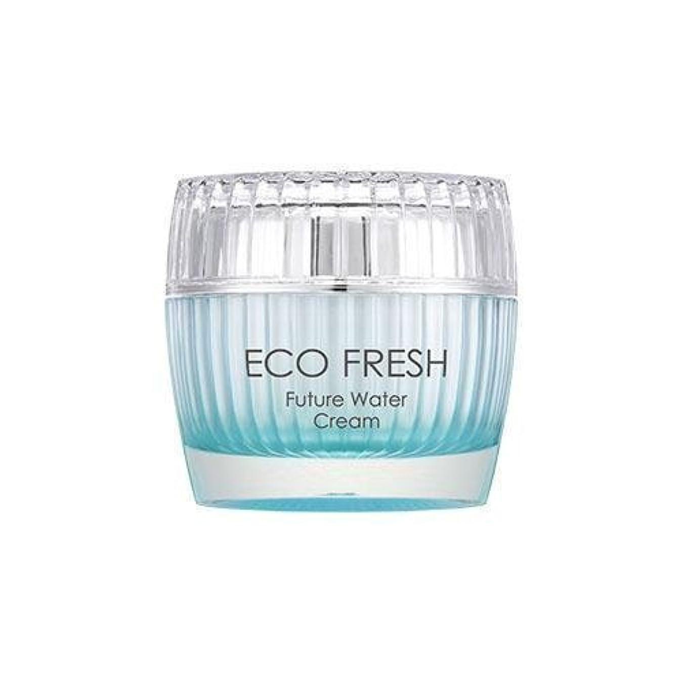 ペンス吸収する言うAPIEU Eco Fresh Future Water Cream/ Made in Korea