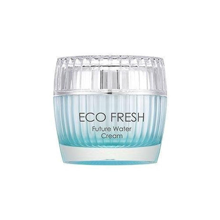 芸術的胃逸話APIEU Eco Fresh Future Water Cream/ Made in Korea