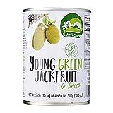 Nature's Charm Jackfruit Salmuera 565g   Vegan   Sin Gluten