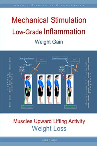 Mechanical Stimulation Low-Grade Inflammation Weight Gain: Muscles Upward Lifting Activity Weight Loss