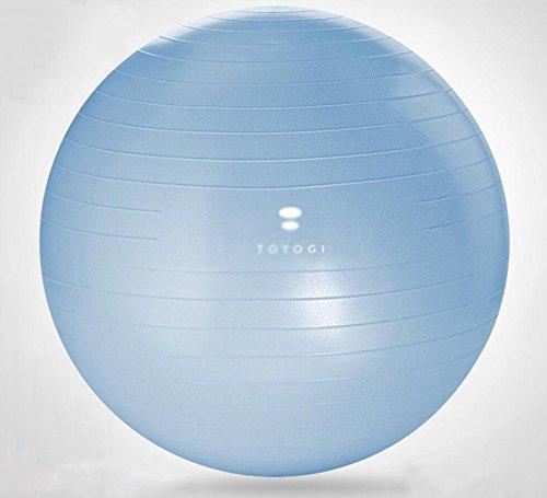 Wly&Home Gymnastikball - Professionelle Sportgeräte Explosionsgeschützte Test-Fußpumpe - Unterstützt 1200 Lbs - Beinhaltet Training Guide Access - 55Cm / 65Cm Balance Ball,Blue,65Cm
