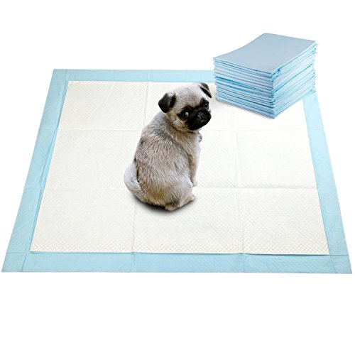 GOBUDDY Super Absorbent Pet Training Puppy Pads 22 x 22 - 100 Count (100-Count)