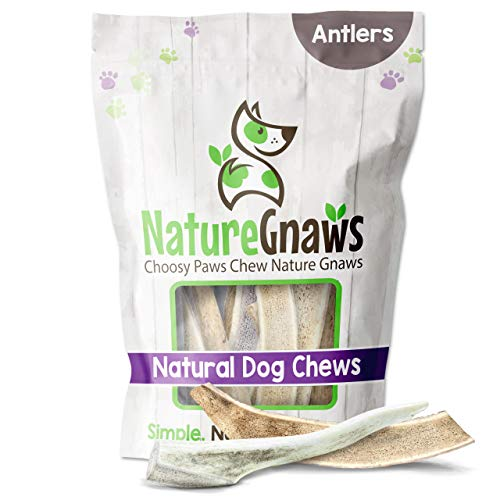 Nature Gnaws Deer Antlers for Small Dogs - Premium...