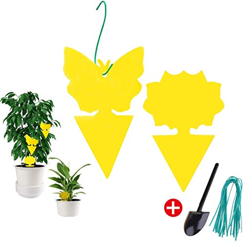VIVIK 24 Pack Sticky Trap,Fruit Fly and Gnat Trap Yellow Sticky Bug Traps for Indoor/Outdoor Use - Insect Catcher for White Flies,Mosquitos,Fungus Gnats,Flying Insects - Disposable Glue Trappers