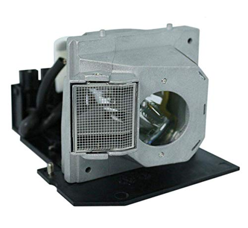 Huaute BL-FS300B Replacement Projector Lamp with Housing for Optoma HD8000LV HD800X HD800XLV HD803 HD803LV HD806 HD806ISF HD80LV HD81 HD81LV HD930 HD980 HT1080 HT1200 Projectors Bl Fs300b Replacement Lamp