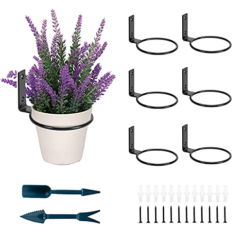 Siyzda 6 Pack Wall Plant Holder - 6 Inch Plant Ring Holder Wall Mounted - Metal Flower Plant Hanging Bracket Hanger for Outdoor/Indoor