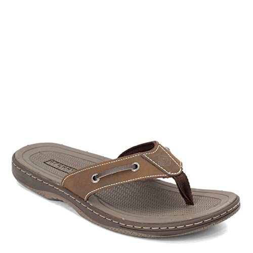SPERRY Mens Havasu Sandal review