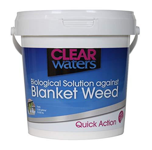 Nishikoi Clear Waters - Tratamiento contra algas, 1 litro