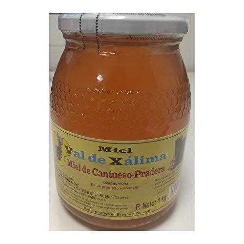 bote de cristal 1 kilo Miel de Tomillo natural marca Val de Xálima