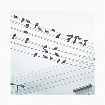 Crow Familia, Two