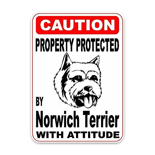 Kerri-007 2 pegatinas de coche protegidas por Norwich Terrier para perros, funda para motocicleta, arañazos de PVC, 14 cm x 10 cm (tamaño: 28 cm x 20 cm)