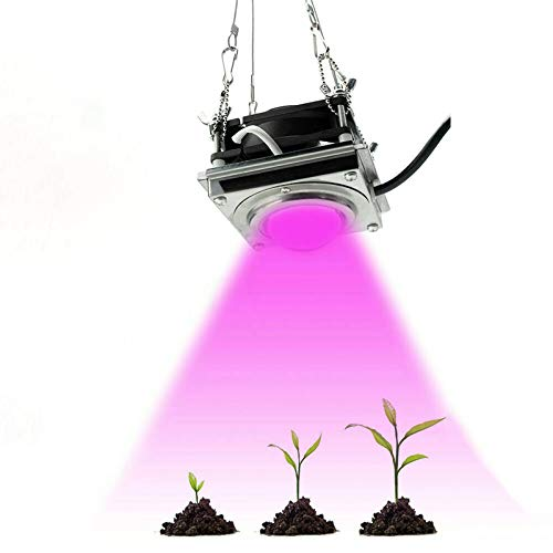WXDL LED Grow Light Full Spectrum IP60 Waterproof Plant Growing Light 60W COB Grow Lamp for Flower Plants Seeds Hydroponics Greenhouses Vegetable Indoor Garden and Grow Tent
