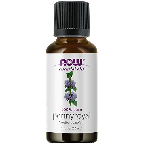 NOW Essential Oils, Pennyroyal Oil,...