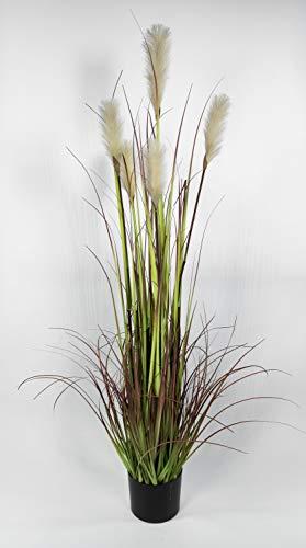 Seidenblumen Roß Pampasgras/Grasbusch 150cm LA Dekogras künstliches Gras Kunstpflanzen Kunstgras künstliche Pflanzen Solitärgras Ziergras