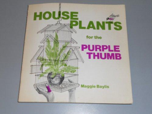 Zimmerpflanzen für den lila Daumen