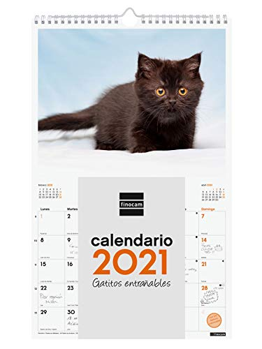 Finocam - Calendario de pared 2021 Escribir Imágenes Espiral 250x400 mm - espiral Gatitos Español