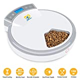 Best automatic cat feeder - Casfuy 5-meals Automatic Cat Feeder - Auto Pet Review