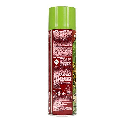 COMPO Zierpflanzen-Spray, Bekämpfung von Schädlingen an Zierpflanzen - 2
