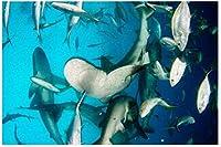 新しい水中サメフレンジーパズル500ピース木製大人ジグソーパズルカラー抽象絵画パズル子供向け教育玩具ギフト
