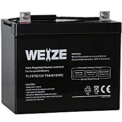 Weize 12V 75AH Deep Cycle Battery for Wayne