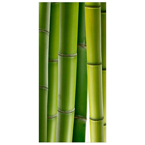 Flächenvorhang Bambus Pflanzen 250x120cm | Raumteiler Raumteiler Raumteiler Vorhang Raumteiler Vorhang Raumteiler Flächenvorhang Wandbild Dekor | Maße: 250x120cm inkl. Transparenter Aufhänger