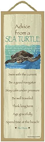 SJT ENTERPRISES INC. Advice from Dealing full price reduction a Wood Sea Primitive Pl Turtle Classic