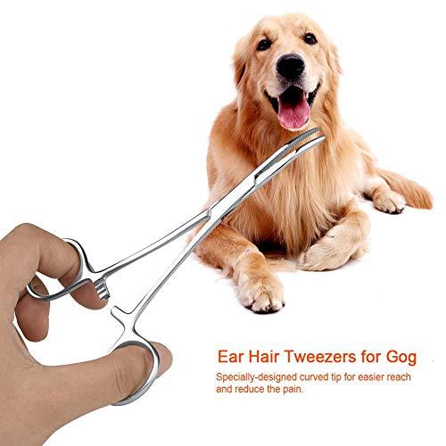 03 Quitar el Pelo de la Oreja Pinzas limpias para el Canal auditivo de Acero Inoxidable, Tijeras para el Cuidado de Mascotas, Pinzas para el Pelo de la Oreja, para Perros y Gatos para(Big)