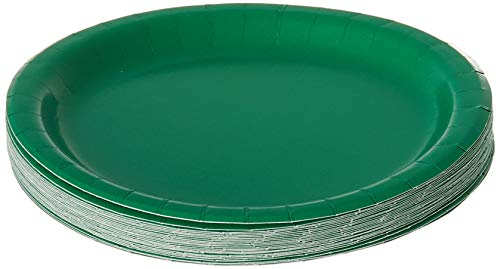 Creative Converting Touch of Color Paper Lunch Plates, 24-Count, Emerald Green