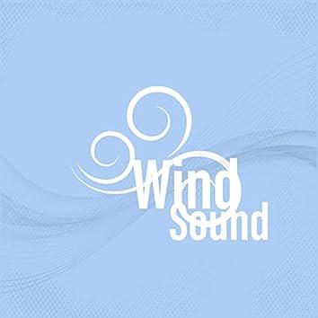 Wind Sound