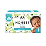 The Honest Company Club Box Diapers with TrueAbsorb Technology, Rose Blossom & Sliced Fruit