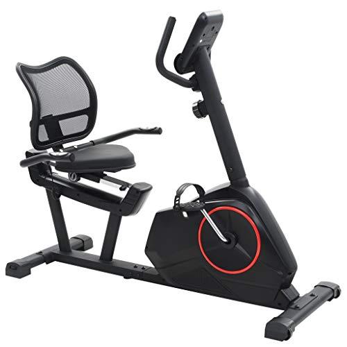 vidaXL Vélo Semi-Allongé d'exercice Masse en Rotation 10kg Appareil de Fitness