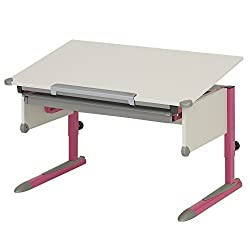 Schülerschreibtisch Kettler College Box Pink