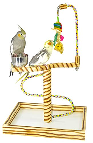 Birds LOVE Bird Play Gym Tabletop w Cup, Toy Hanger and Toy, Javan TigerTail Stand - Small