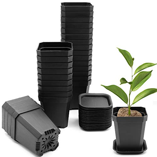 "Foxany 30 Pcs 3"" Plants Nursery Pot, Thick Plastic Square Flower Planting Pots, Plant Seedling Pots, Seed Starting Pots with Saucers - Black 30 Pcs"