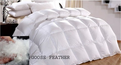 Adam Duck Feather & Down Stitched Duvet Quilt Box Single Double King Super King 13.5 TOG (King)