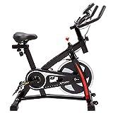Z Zelus Bicicleta Estática para Fitness de Capacidad 120KG Bicicleta de Spinning Profesional con Volante 10KG Exercise Bike con Asiento Ajustable para Casa y Gimnasio