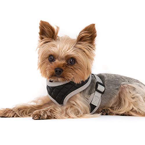 ZuGoPet Soft Harness for Cats- Escape Proof Harness for Small Animals, Easy Walk Harness with Dog Seat Belt, Comfort Fit for Pet, Kitten, Puppy,Rabbit, Ferret Etc, No Pull Harness Pet Safety, Black